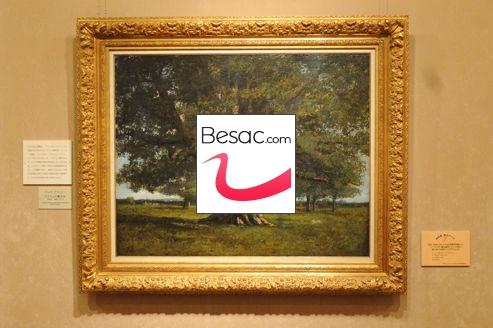 actualit besancon doubs un ch ne 4 m 26 10 2012. Black Bedroom Furniture Sets. Home Design Ideas